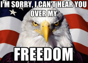 Angry bald eagle says I'm sorry I can't hear you over my FREEDOM